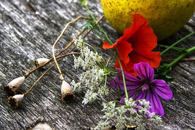 Prise de vue A6000, fleurs et fruit