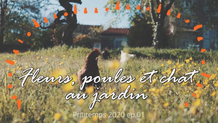 Jardin, fleurs, poules et chat - Sony A6000 et étalonnage -